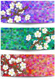 Banners with floral branch and triangle background Stock Images