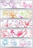 Banners with flower. A set of five banners with colorful flowers Stock Photos
