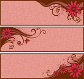 Banners with flowers. Banners with pink flowers and drop Stock Images