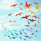 Banners with flying birds silhouettes. Royalty Free Stock Photo