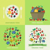 Banners with fresh berries and fruits. Concept vegetarian organic healthy food. Vector illustration. Banners with different fresh berries and fruits. Concept royalty free illustration