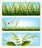 Banners with grass Stock Photos