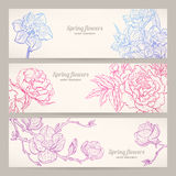 Banners with hand-drawn flowers Stock Images