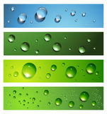 Banners, headers. With dew, water drops, vector Stock Photography