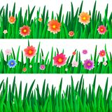 Banners with isolate grass with flowers Stock Photos