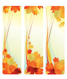 Banners with leafs. Royalty Free Stock Photo