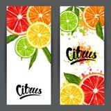Banners met citrusvruchtenplakken Mengeling van de grapefruit en de sinaasappel van de citroenkalk royalty-vrije illustratie