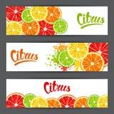 Banners met citrusvruchtenplakken Mengeling van de grapefruit en de sinaasappel van de citroenkalk vector illustratie
