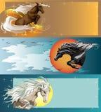 Banners met het springen paarden Stock Fotografie