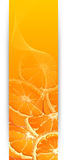 Banners with oranges Stock Photo