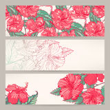 Banners with pink hibiscus Stock Photos