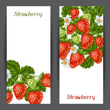 Banners with red strawberries. Illustration of berries and leaves Stock Photos