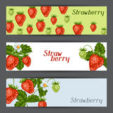 Banners with red strawberries. Illustration of berries and leaves.  Royalty Free Stock Image
