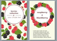 Banners with ripe fruits of raspberries and blueberries. Vector illustration. Vector vertical banners with berries and leaves of blueberries and raspberries on Stock Photo