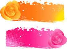 Banners with roses - pink and orange Royalty Free Stock Photo