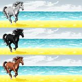 Banners with running horse Royalty Free Stock Photos