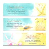 Banners with Seaside and Starfish. Set of horizontal watercolor banners with Seaside and Starfish. All object made in vector. Each one is separately stock illustration