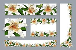Banners set elegant lily tiger type realistic flowers vector vector illustration
