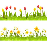 Banners of spring flowers Stock Image