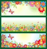 Banners with summer flowers. Horizontal banners with summer colorful flowers Stock Photo