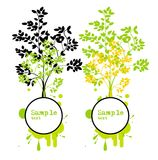 Banners with trees in modern style. Vector set of two banners with trees in grunge style Stock Photo