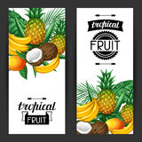 Banners with tropical fruits and leaves. Design for advertising booklets, labels, packaging, menu Stock Photography