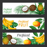 Banners with tropical fruits and leaves. Design for advertising booklets, labels, packaging, menu Royalty Free Stock Images