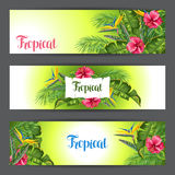 Banners with tropical leaves and flowers. Palms branches, bird of paradise flower, hibiscus Royalty Free Stock Photography
