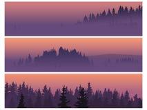 Banners van naaldhout in een mist. Stock Afbeeldingen