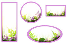 Banners with viola flowers Royalty Free Stock Photo