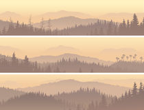 Banners of wild coniferous wood in morning fog. royalty free illustration