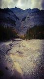 Bannf山景干燥河床 免版税库存照片