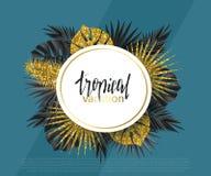 Bannière à la mode d'été, affiche avec les plantes tropicales d'or et feuilles Fond universel de vecteur avec l'endroit pour le t Image libre de droits
