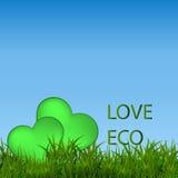 Bannière écologique verte avec l'herbe verte et le ciel bleu Photos stock