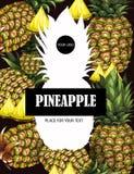 Bannière avec l'ananas tiré par la main Illustration de vecteur Images stock