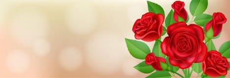 Bannière avec la rose et la feuille de rouge Photos libres de droits