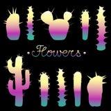 Bannière avec les silhouettes rougeoyantes de différents types des cactus et de lettrage illustration stock