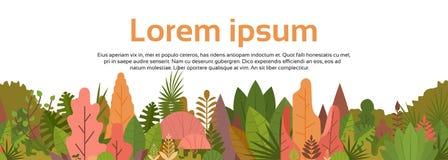Bannière colorée en bois de Forest Over White Copy Space Photos libres de droits