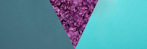 Bannière créative de Web d'art de bruit Turquoise heureuse de jour ou d'anniversaire du ` s de père et fond bleu Images libres de droits