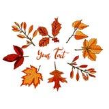 Bannière d'aquarelle des feuilles d'isolement sur le fond blanc illustration stock