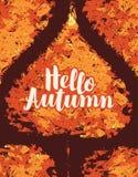 Bannière d'automne avec la feuille lumineuse de peuplier d'automne Photo libre de droits