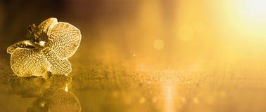 Bannière d'or de fleur Photos libres de droits