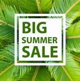 Bannière de calibre de vente d'été Images stock