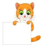 Bannière de chaton Photographie stock libre de droits
