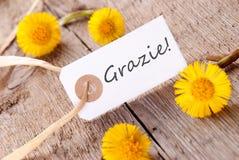 Bannière de Grazie Image libre de droits