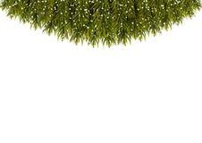 Bannière de la publicité décorée des branches vertes de sapin Noël illustration de vecteur