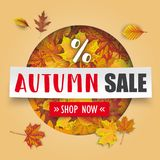 Bannière de livre blanc d'Autumn Sale Cover Hole Foliage Images stock
