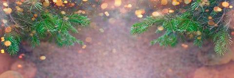 Bannière de Noël - frontière d'arbre de sapin et de lumières de Noël photos libres de droits