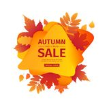 Bannière de remise de conception de calibre pour la saison d'automne Affiche en vente spéciale de chute avec la fleur orange, déc illustration libre de droits