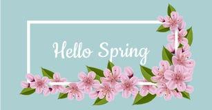 Bannière de ressort avec les fleurs et le cadre de cerise Image stock